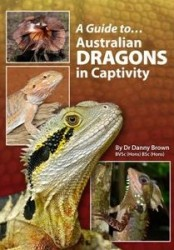 Australian_Dragons