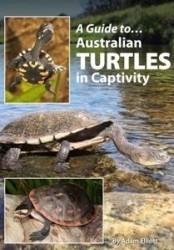 Australian_Turtles