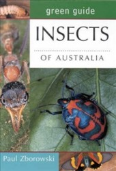 green guide insects