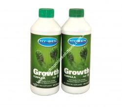 Hy-Gen Growth A&B