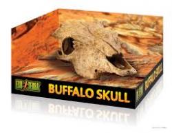 Buffalo skul