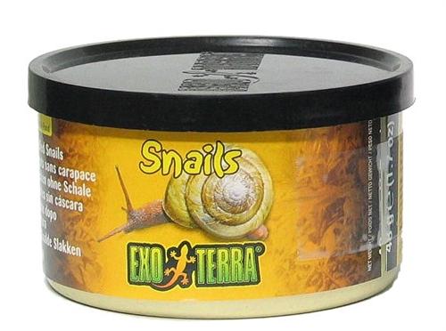 et snails.